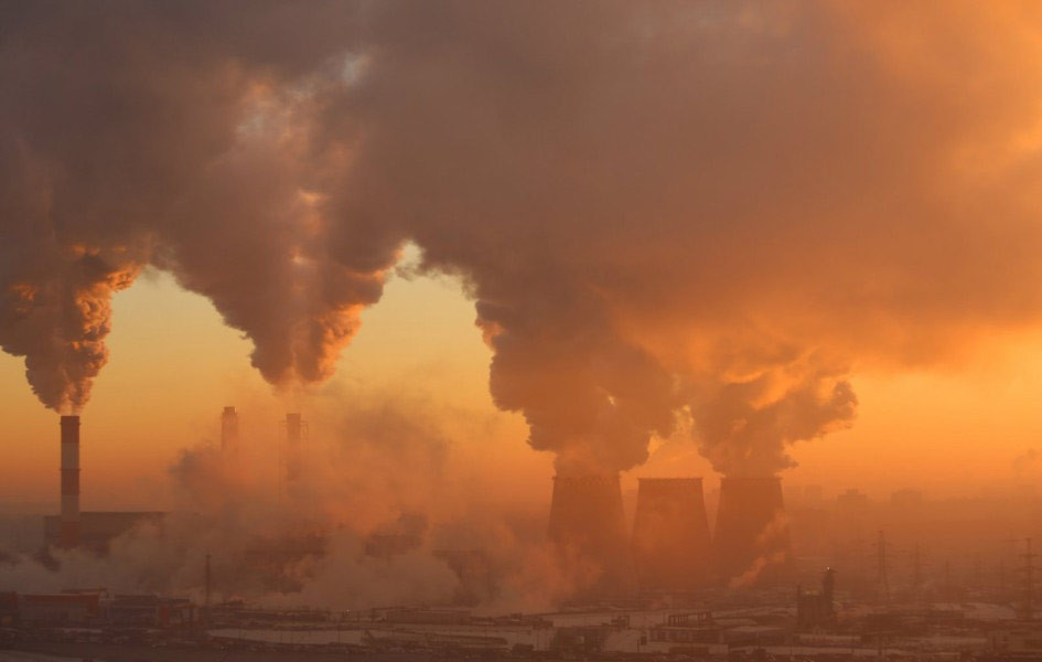 Businesses, the state and their responsibility towards environmental protection in Egypt